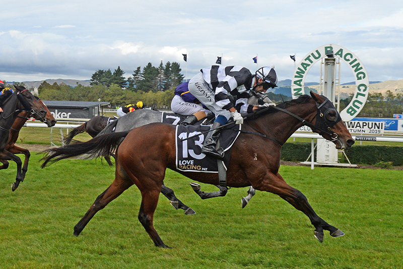 Fiscal Fantasy takes out the Group 3 Manawatu Breeders Stakes